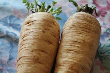 Palate Pleasing Parsnips